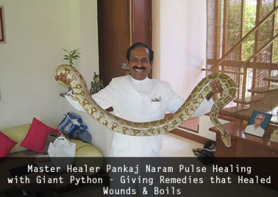 Dr Pankaj Naram Pulse Healing with Giant Python - Giving Remedies that Healed Wounds & Boils